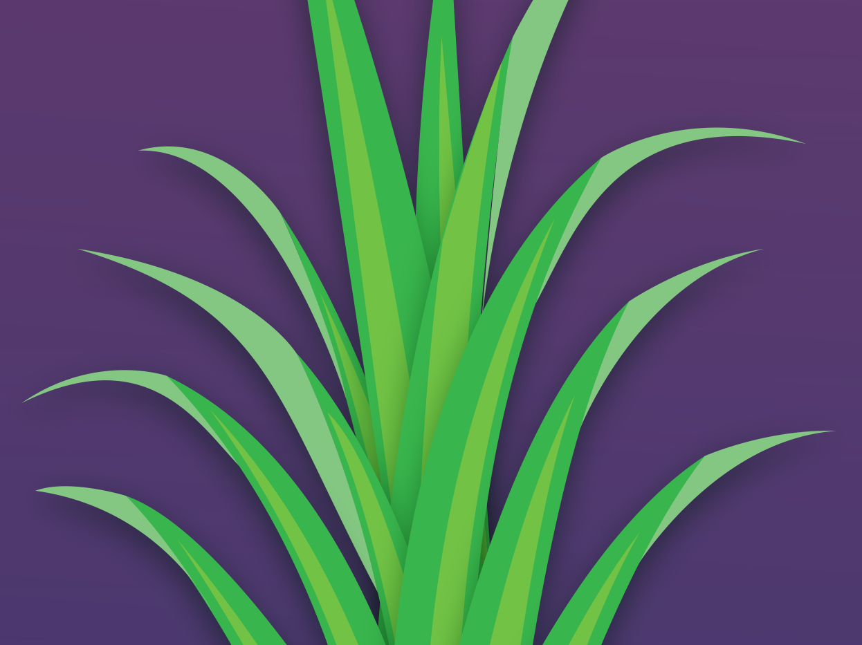 FLIP Apparel Co. | Pineapple Textile 3