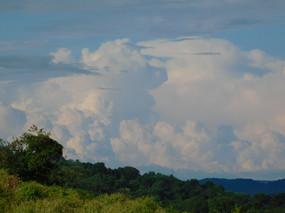 A Horizon of Convection