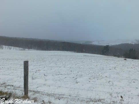 Winter Scenery During a Snow Squall Outbreak in the Outskirts of Grantsville, MD