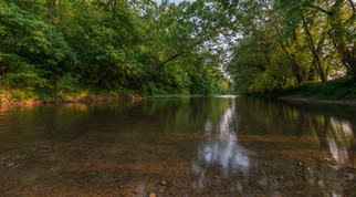 Reflections on Patterson Creek