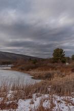Late February Landscape