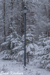 """""""The Lamp Post Of Narnia"""""""