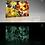 Thumbnail: Abstract Shells