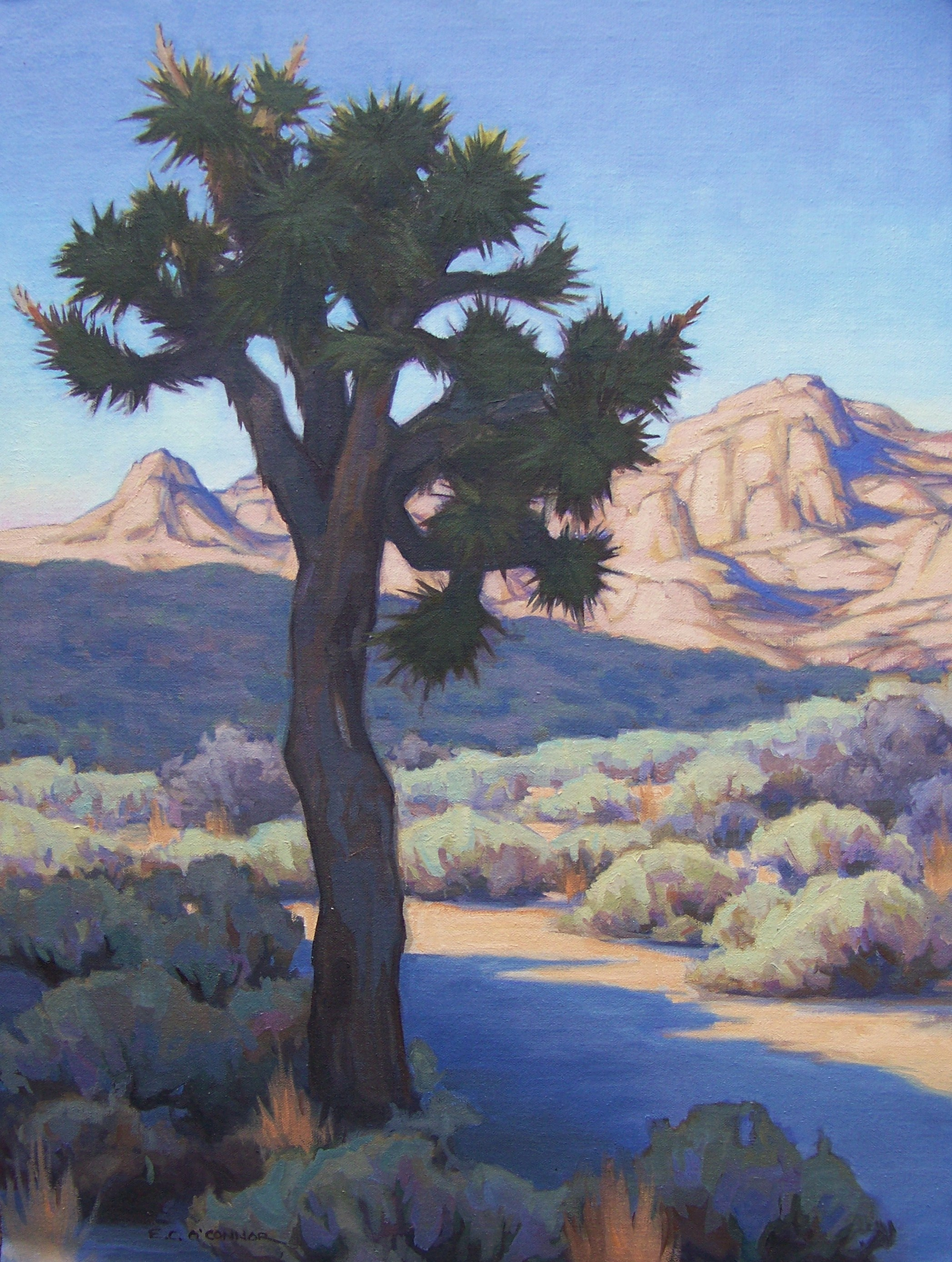 From Out Of The Blue, 24x18, oil on linen; Permanent Collection NPS