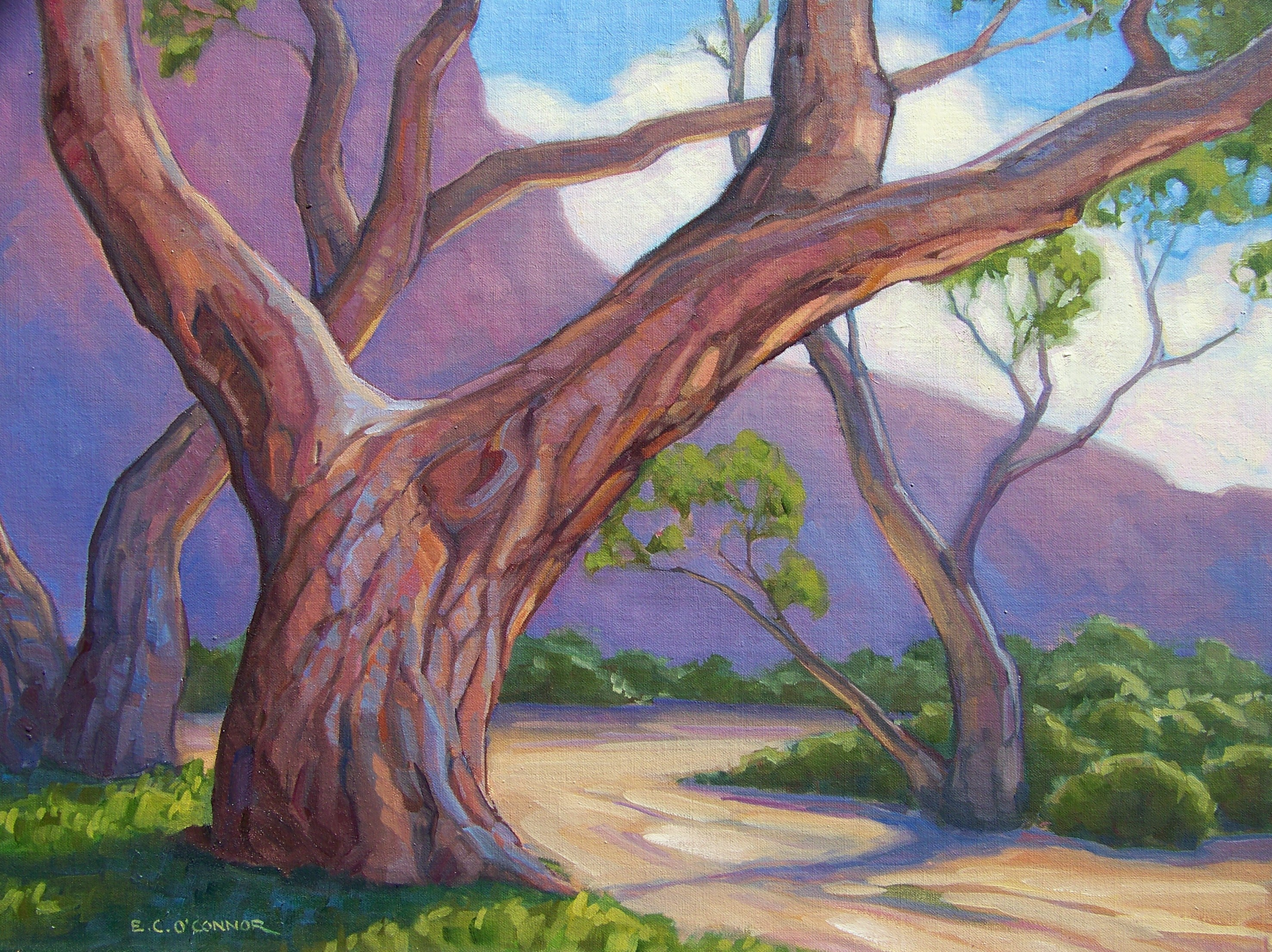 Santa Fe Trail Cottonwood, 18x24, oil on linen