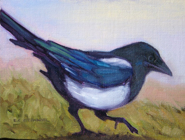 Frosty Morning Magpie, 6x8, oil on linen