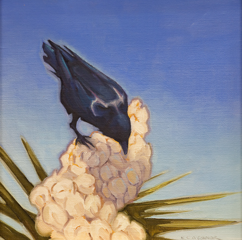 Ravens Blossom, 12x12, oil on linen