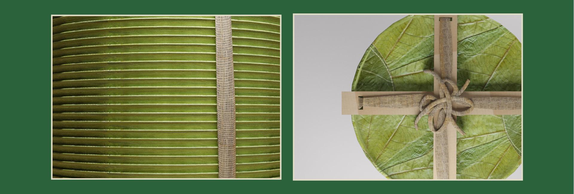 Packaging NT2020-06.jpg