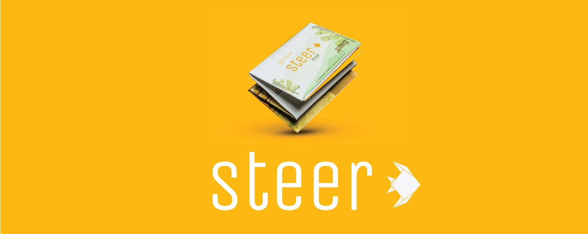 steer strip-02.jpg