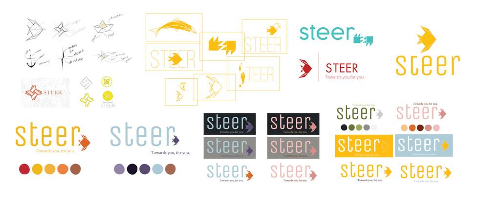 Website_steer2020-09.jpg