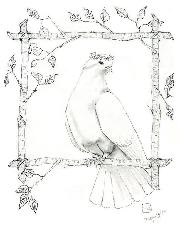 Dove on Birch Wreath