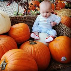 Xander's Fall Photos
