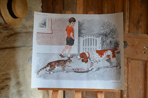 Affiche vintage chien chat