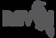 RAven_seo_Logo.png