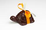 La tortue en chocolat (lait ou noir)