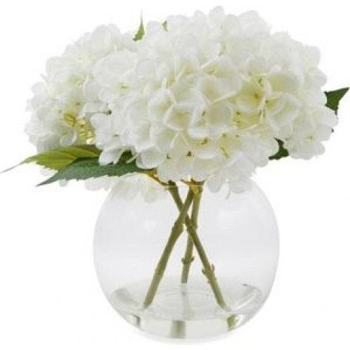 White Hydrangeas in Globe