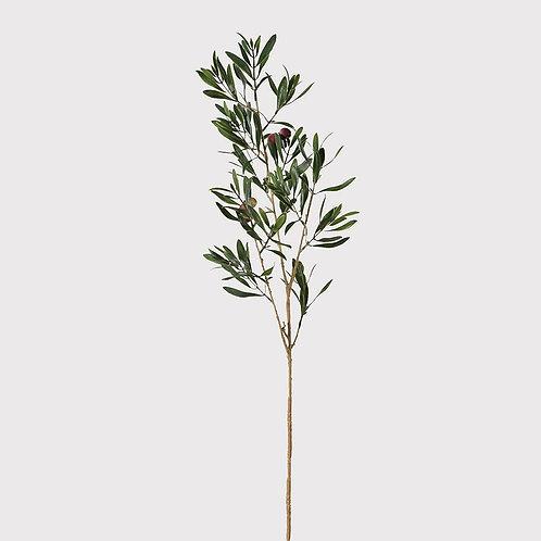 Natural Olive Spray