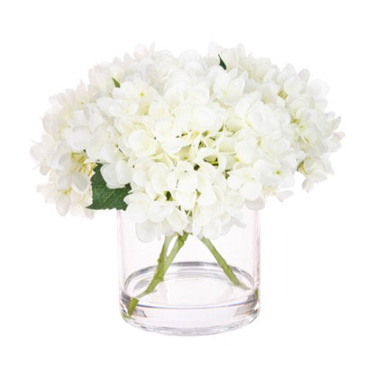 White Hydrangea in Cylinder Vase