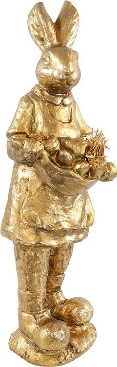 "GOLDEN RABBIT""NOSTALGIA"" - XL"