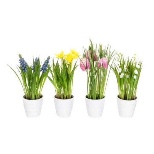 Set of 4 Potted Spring Flowers Assorted