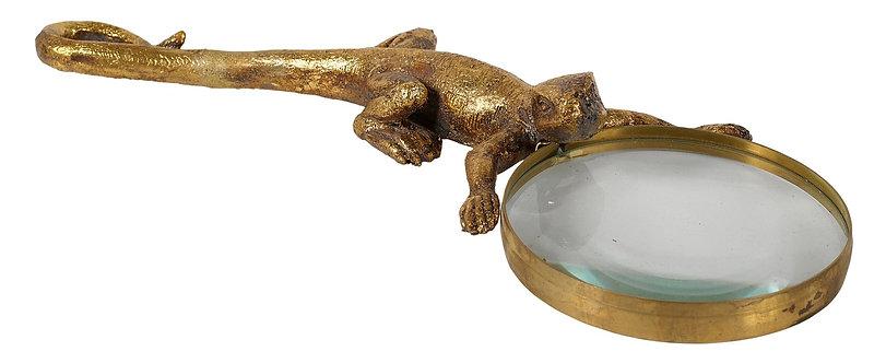 Lizard Magnifier