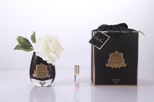 COTE NOIRE -TEAR DROP TEA ROSE IN BLACK GLASS - IVORY WHITE