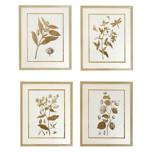Summer Prints - Set Of 4