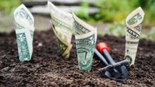 Money Matters: DIY or Get Help?