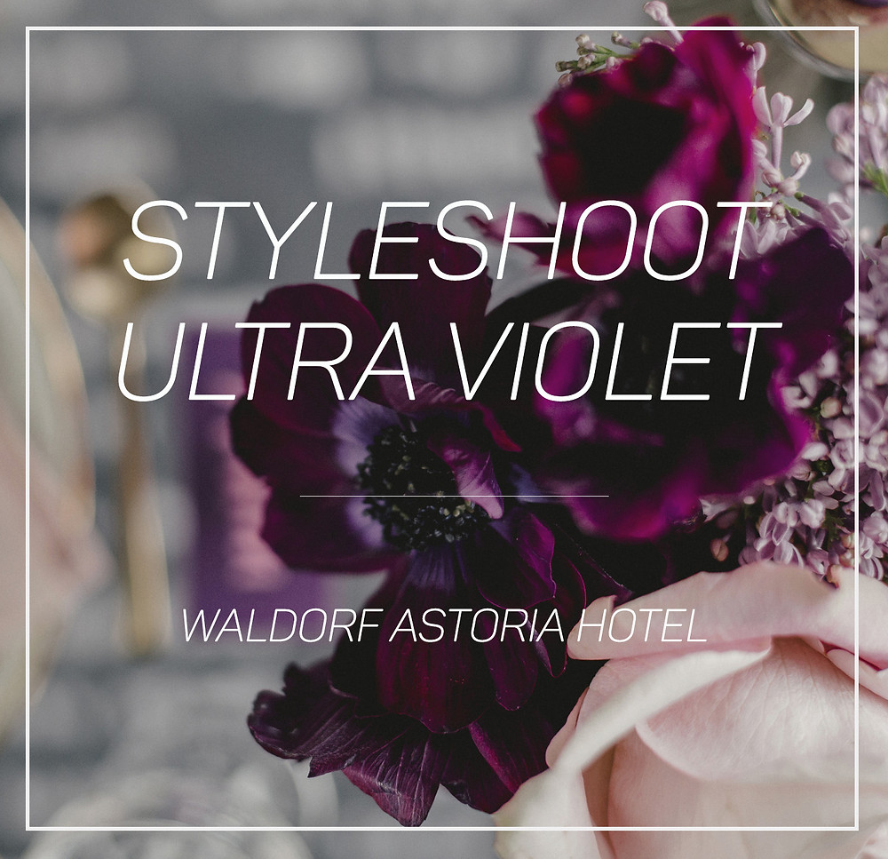 Seeking ultra violet inspiration?