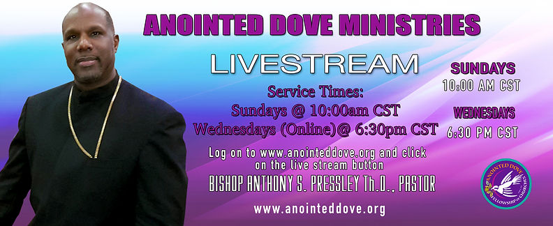 anointed dove  live stream site sd CST.j