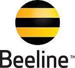Beeline takım çalışması, Beeline team building