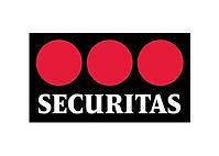 Securitas takım çalışması, Securitas team building