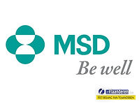 MSD İlaç takım çalışması, MSD İlaç team building
