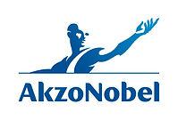 Akzo Nobel takım çalışması, Akzo Nobel team building