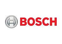 Bosch takım çalışması, Bosch team building