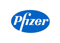 Pfizer takım çalışması, Pfizer team building