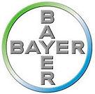 Bayer takım çalışması, Bayer team building