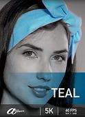 Atripper Teal.png