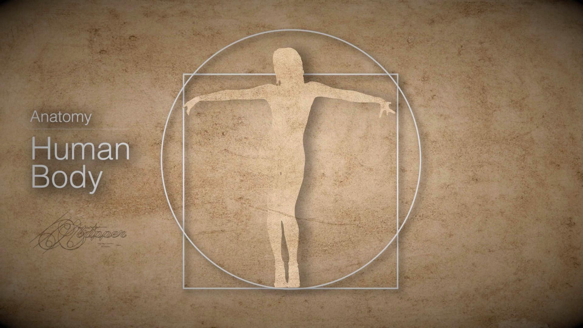 Atripper - human body.jpg