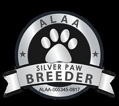 Iowa Meadow Labradoodles ALAA Silver Paw