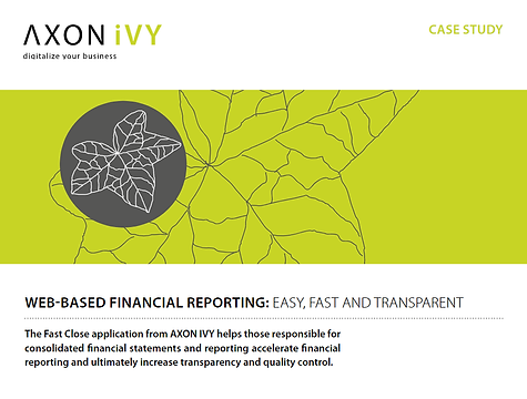 Case Study Web Based Financial Reporting