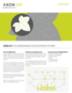 Comprehensive Digitalization Platform Br