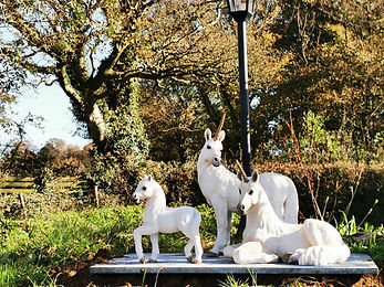 Family of unicorns October 2020