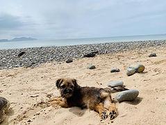 June Newborough beach May 2021g