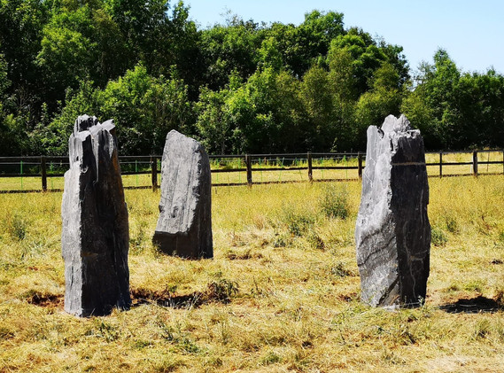 Cwtch@Hafod Standing stones