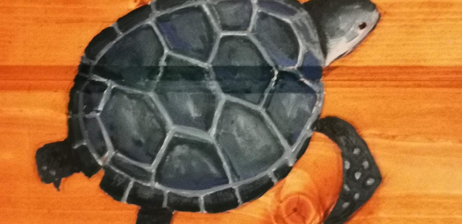 Turtle mural in Mam
