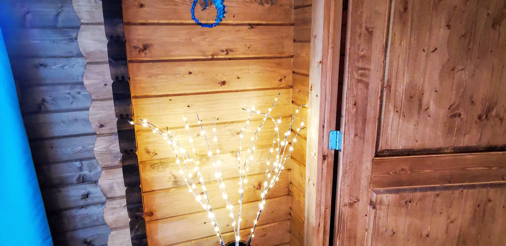 Seahorse mural and twig lights in Mam@Cw