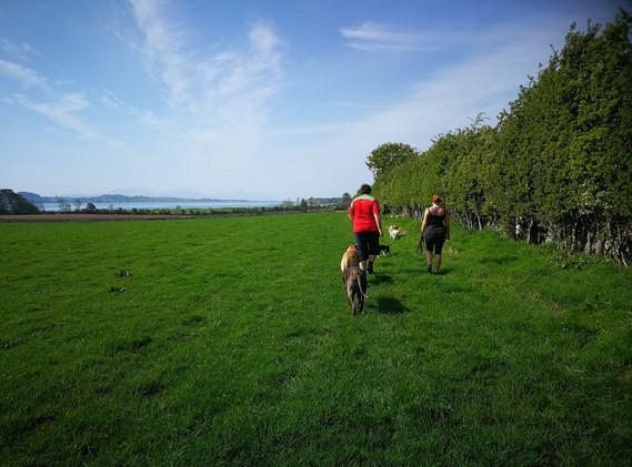Anglesey Coastal Footpath Brynsiencyn
