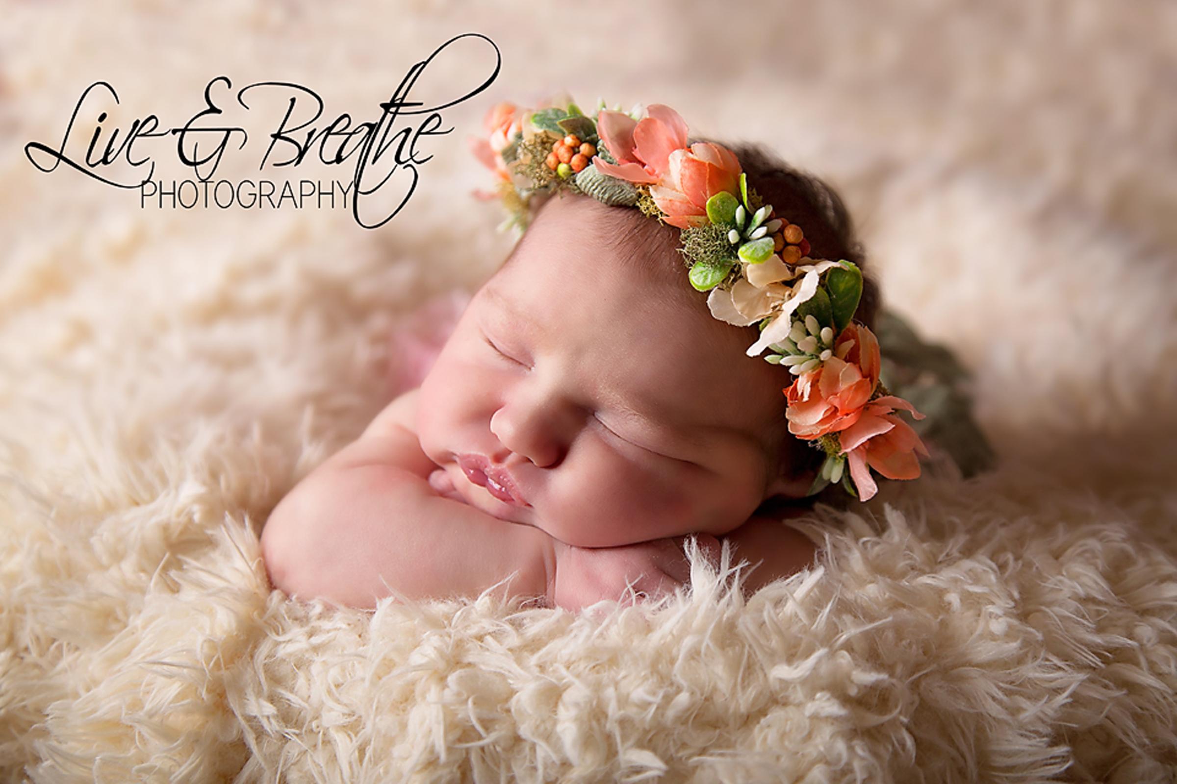 Newborn with succulent halo