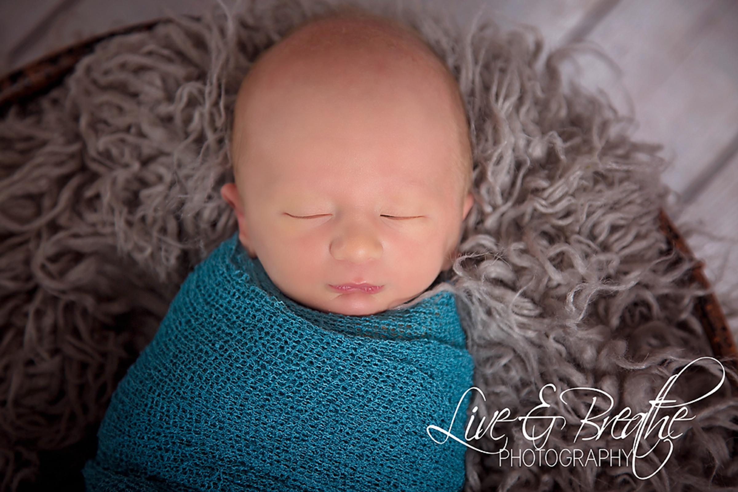 Newborn in fur